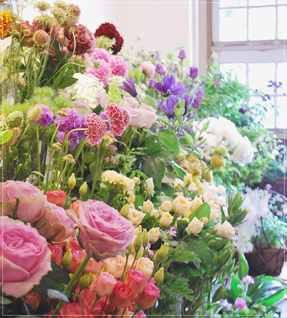 ラムズイヤーの花たち