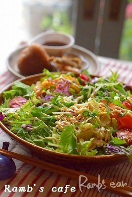 お野菜たっぷり食感美味しいサラダうどん